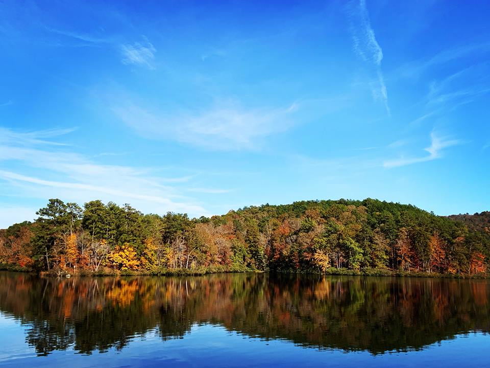 6 nature events at Oak Mountain State Park this month, including hikes, turtles, and reptiles