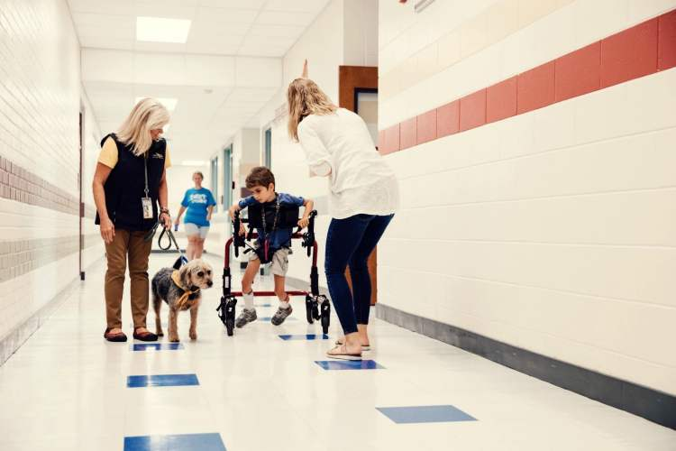 With Animal-Assisted Therapy, Hand in Paw helps people with special needs