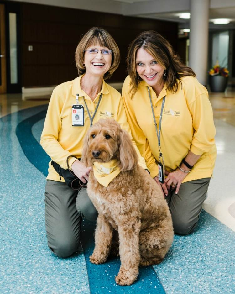 Hand in Paw plans to grow their Animal-Assisted Therapy Team family with a new training program