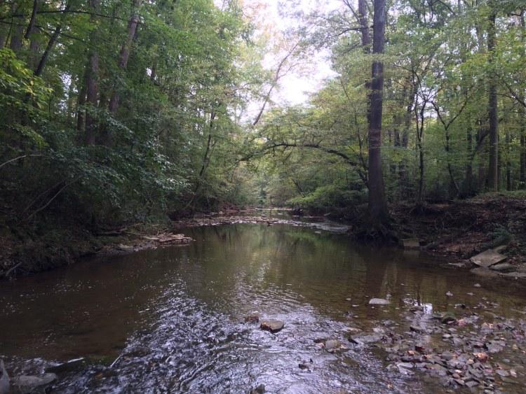 Birmingham, Alabama, Mountain Brook, Jemison Park, Red Rock Trail System, Red Rock Trail System