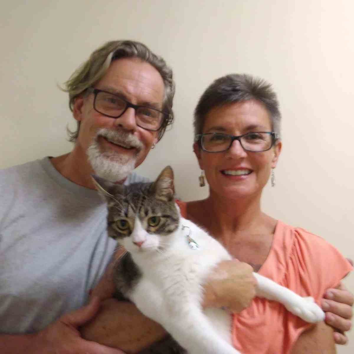 Birmingham, Gatos and Beans, cat adoption, animal adoption, REV Birmingham, Big Pitch