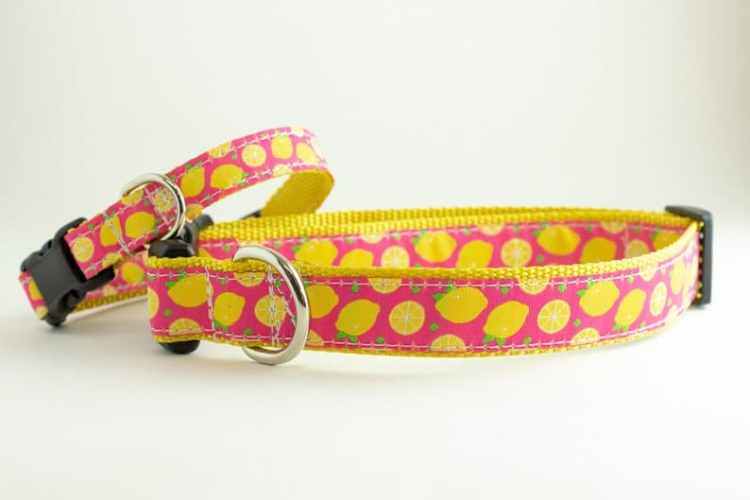 Birmingham, Sadie Bug's Collars, Etsy, pets, dogs, animals, dog accessories, dog collars