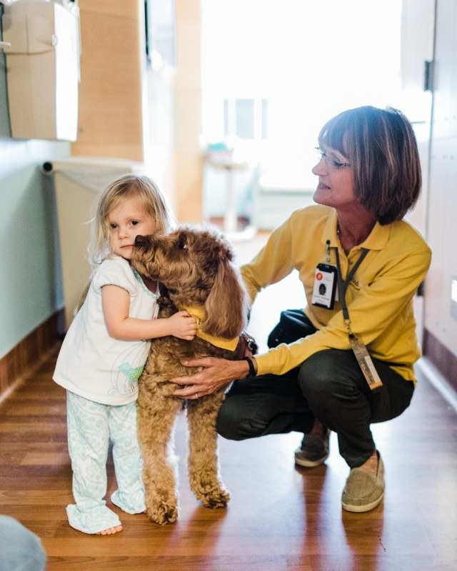 Animal-assisted therapy teams provide comfort and joy across Central Alabma through Hand in Paw.