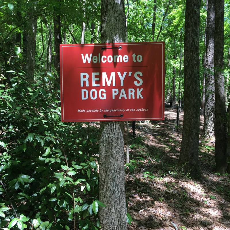 Remy's Dog Park at Red Mountain Park is a popular spot for dogs who like to hike.