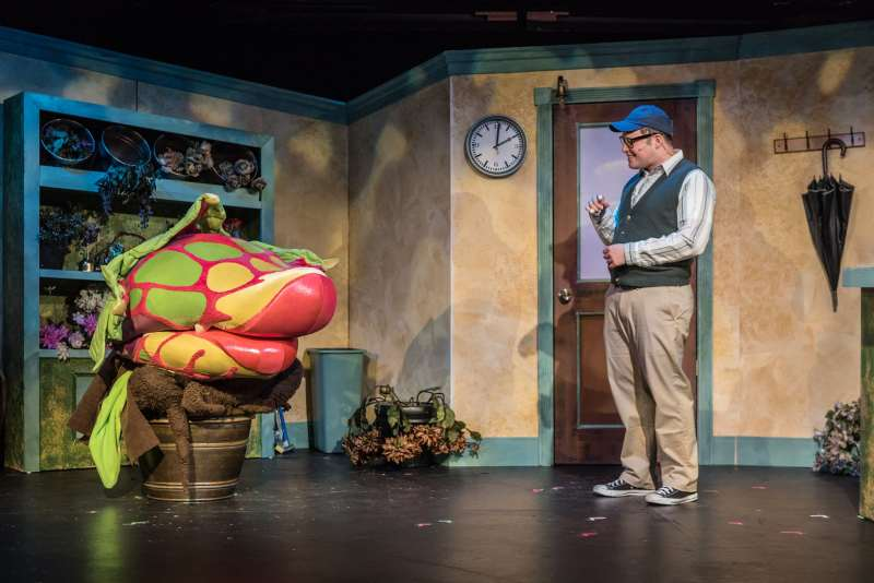 You'll ROFL at Little Shop of Horrors  Enjoy music, laughs