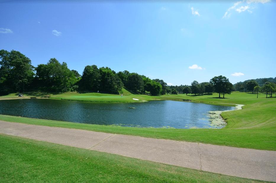 Lakeview Lake 2019