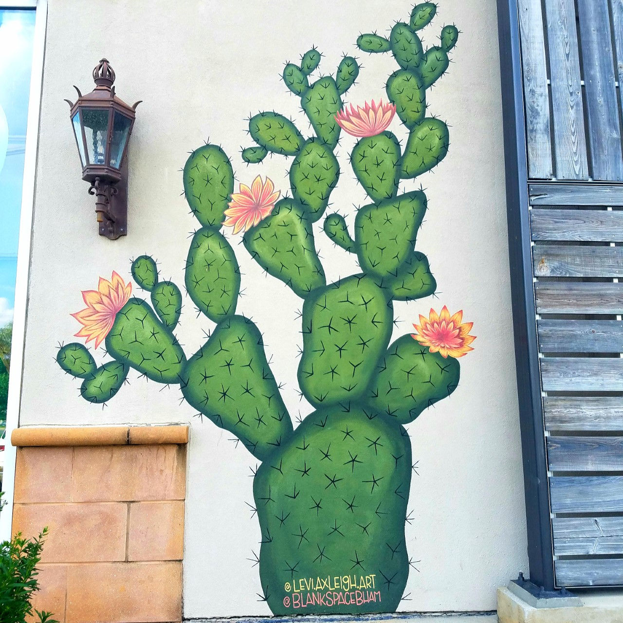 Cactus mural surrounds some of Birmingham's noteworthy businesses.