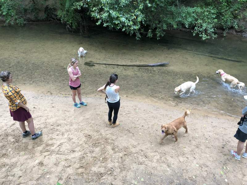 The Hoover Dog Park has a beach by the creek.