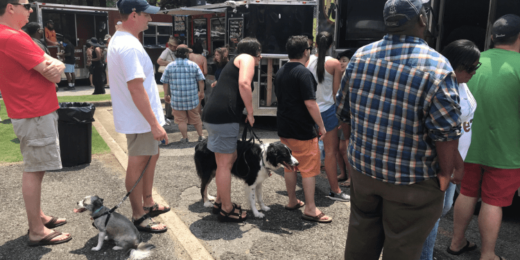 People and dogs lining up at the Funky Food Truck Festival.