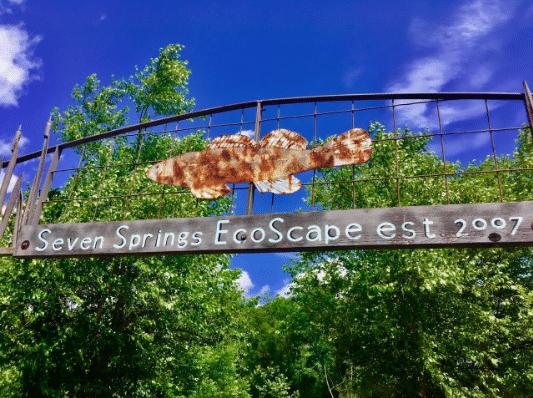 Seven Springs Ecoscape