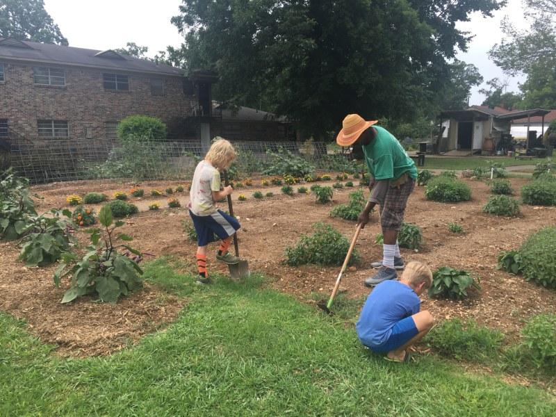 Myron Pierre shows volunteers how to weed at WE Garden.