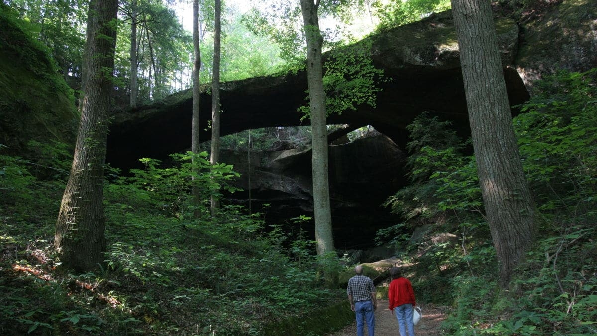 Road trip alert! The Natural Bridge of Alabama in Winston County – just 75 minutes from Birmingham