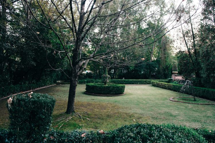 The secret gardens at the Homewood Pink House