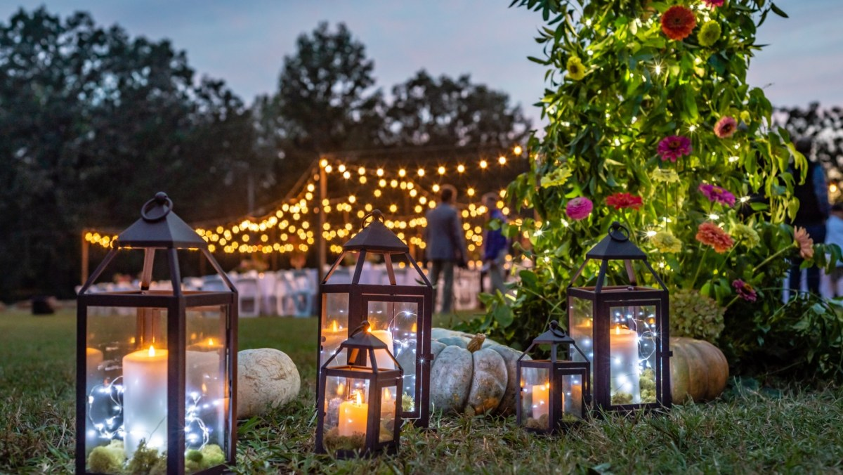 Celebrate the growth of King's Garden with an Evening in the Garden on Oct. 5
