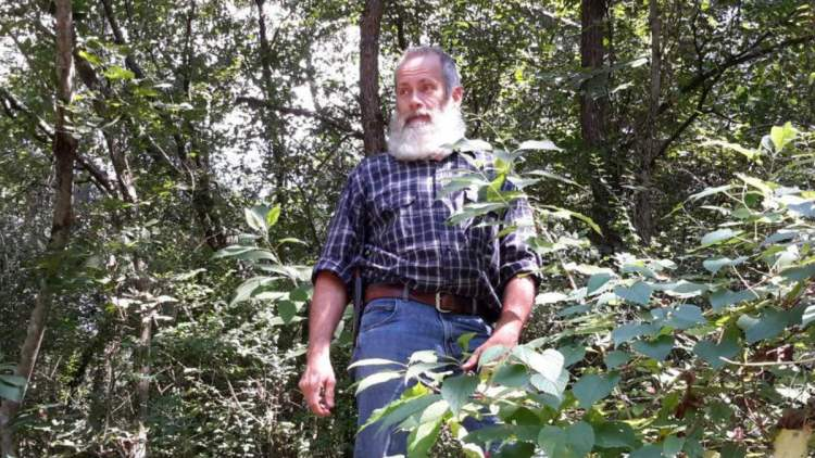 Darryl Patton foraging in the Smoky Mountains