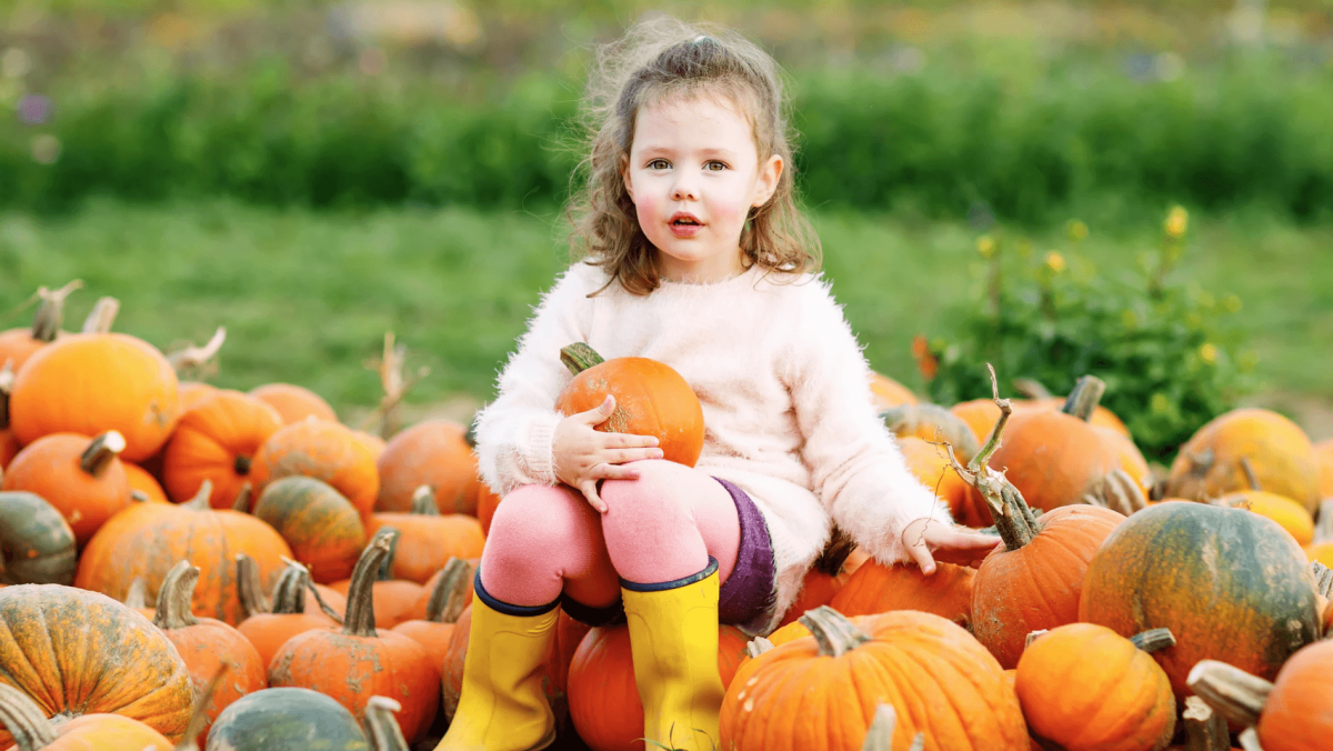 7 places to take your pumpkin patch pictures this October within 1 hour of Birmingham