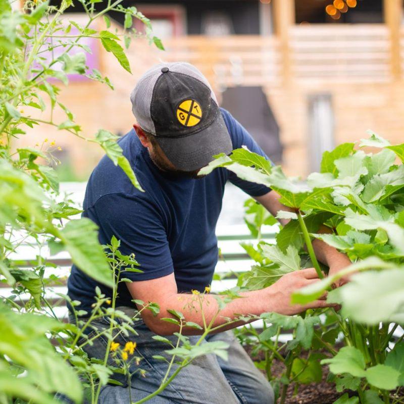 JP working in garden