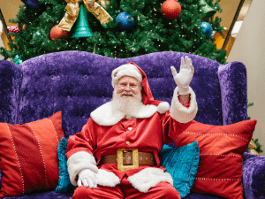 Visits and Photos with Singing Santa