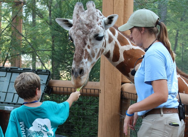 Birmingham, Birmingham Zoo, The Birmingham Zoo, summer camp