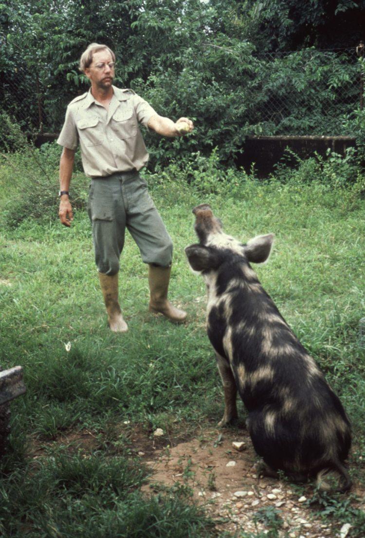 Dr. Steven N. Austad with a big pig
