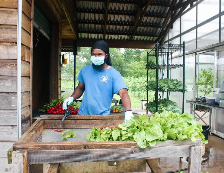 Birmingham, Jones Valley Teaching Farm