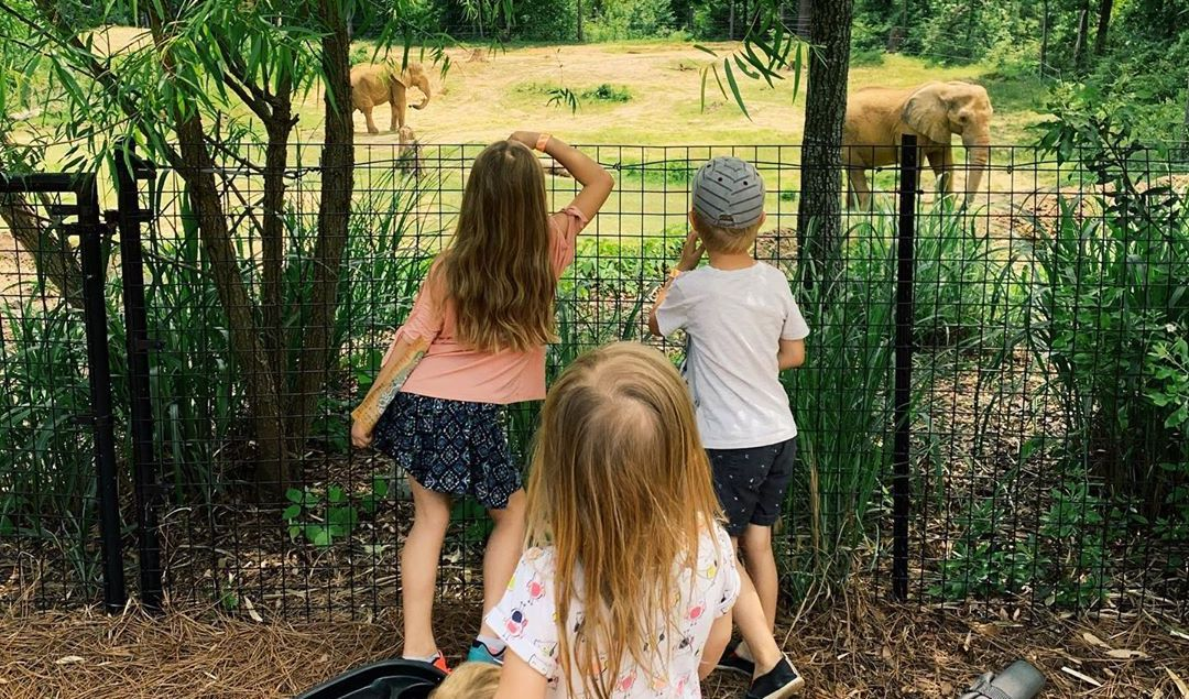 What's new at the Birmingham Zoo? We found out