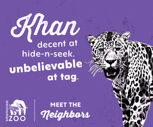 See Khan play tag at the BIrmingham Zoo