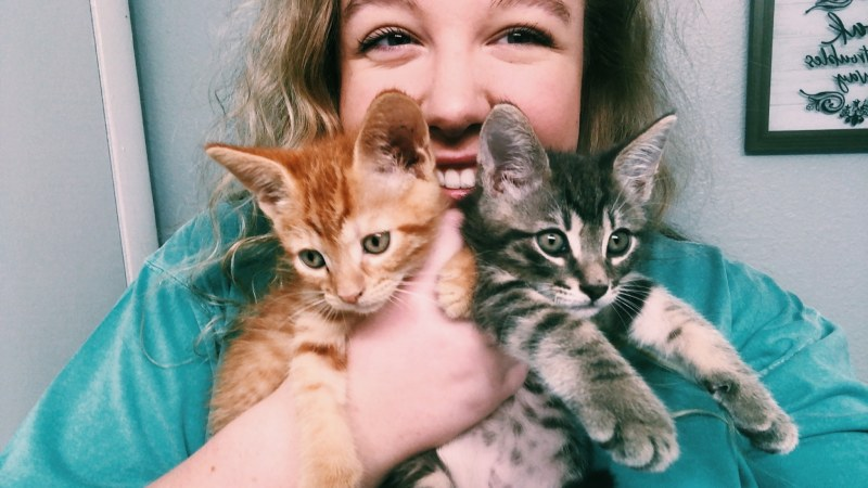 Report: Birmingham ranks 5th Most Pet-Friendly city in U.S.