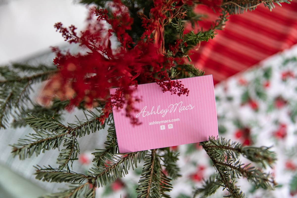 Ashley Mac's Holiday Bundle