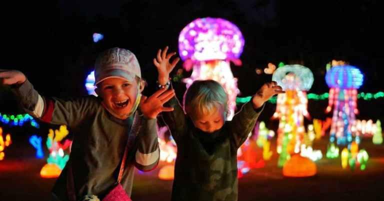 lanterns at the zoo
