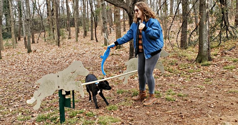 George Ward dog park in Green Springs