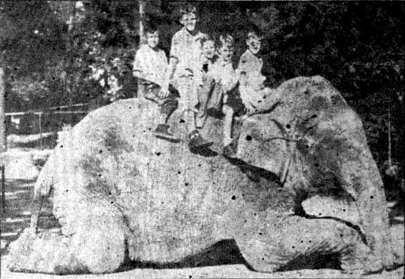 Old photo of Miss Fancy giving a children a ride on her back