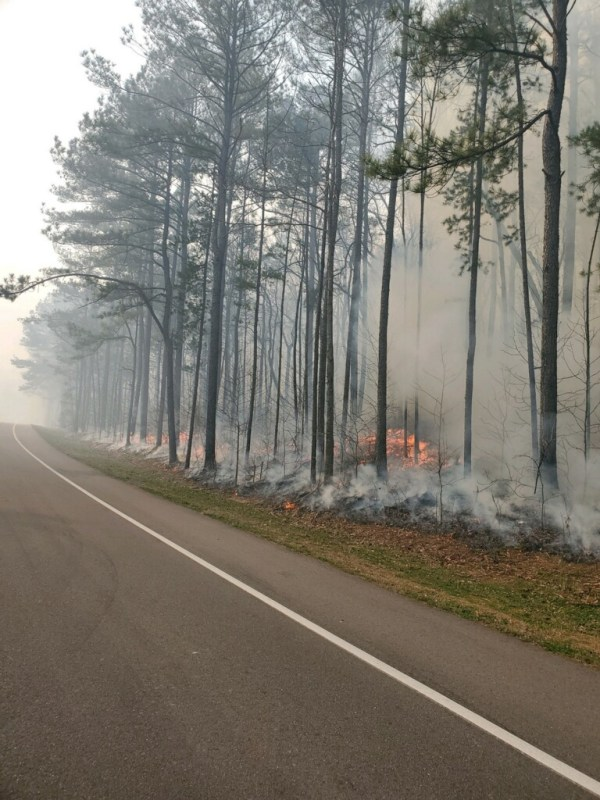 Oak Mountain fire