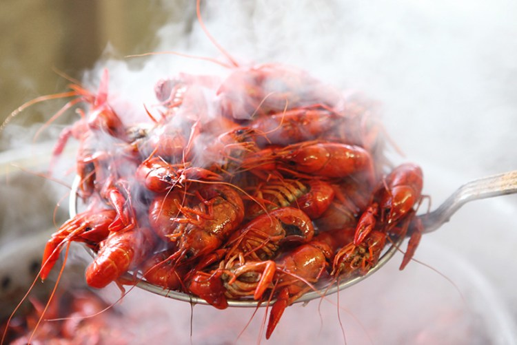 steaming crawfish