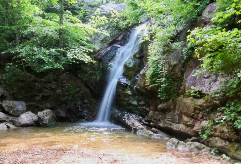 5 Birmingham hiking trails you need to check out today for spectacular views, wildlife + more