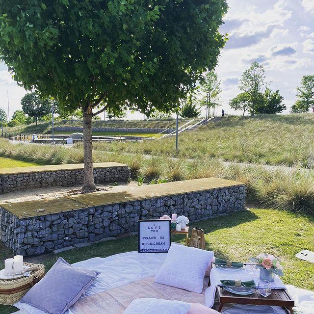 Picnic & Chill Bham luxury picnic at Railroad Park