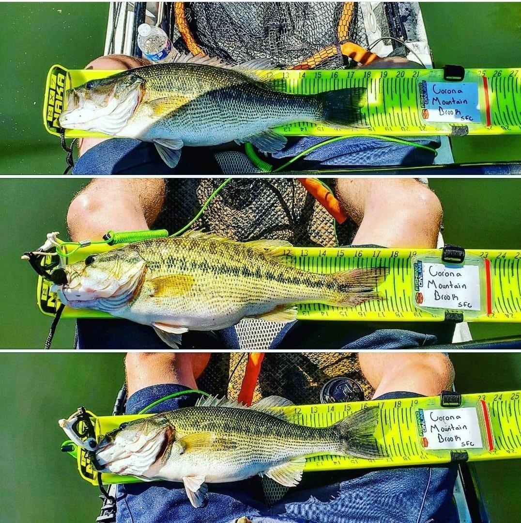 measuring fish at a kayak fishing tournamen