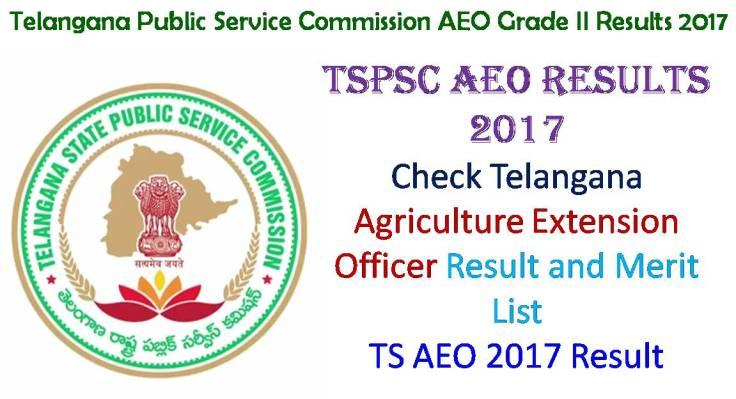 TS AEO Grade 2 Result 2017