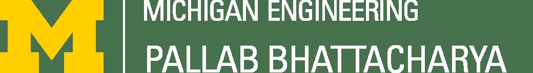 Pallab Bhattacharya Logo