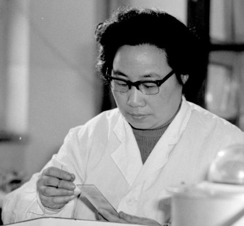 What is Intelligence? The Battle between Man and Parasite.This photo taken in the 1980s released by Xinhua News Agency on Monday Oct. 5, 2015 shows Tu Youyou, a pharmacologist with the China Academy of Chinese Medical Sciences in Beijing.