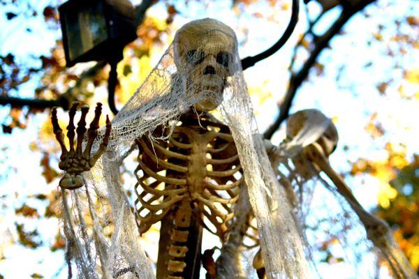 Sleepy Hollow Skeleton