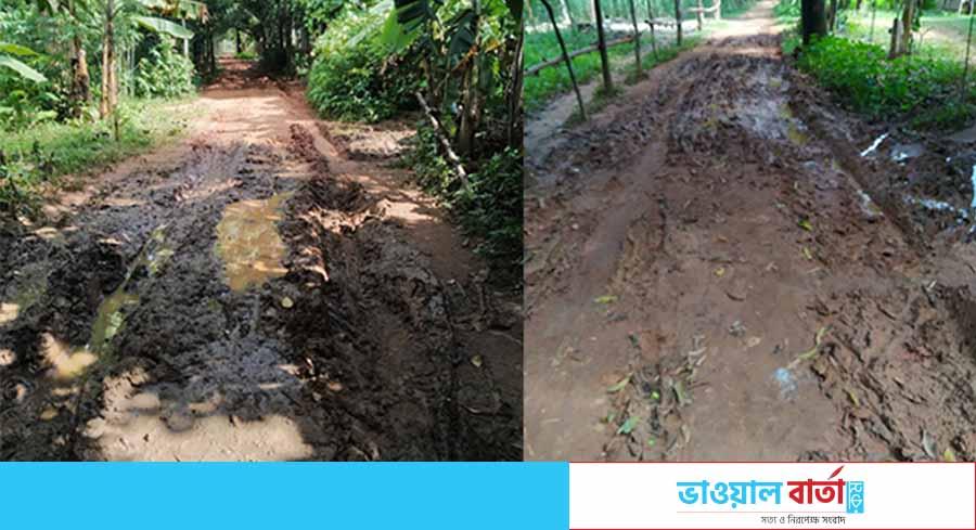 কাপাসিয়ার বারিষাব ইউনিয়নের কয়েকটি রাস্তার বেহাল দশা