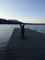 Here is another photo of Lolo on the same deck but looking towards the North West of the lake.