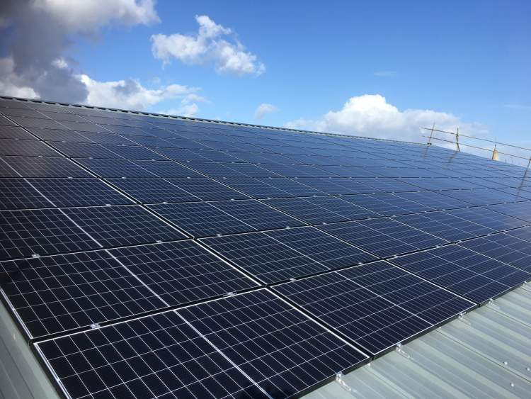 solar panels school plumpton college