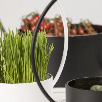 o-collection-planter-white-large-03-amara
