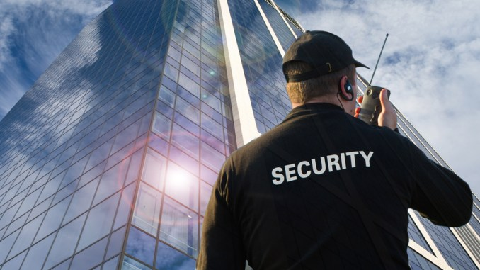 Zimbabwean Businesses Must Invest in Considerable Security Measures: BMI