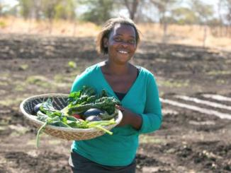 Linkages Needed For Zimbabwean Women To Grow In Business