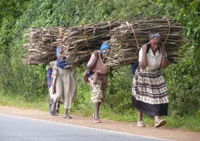 Zimbabwe's Economic Environment Worsen Gender Inequality: Human Rights Commission