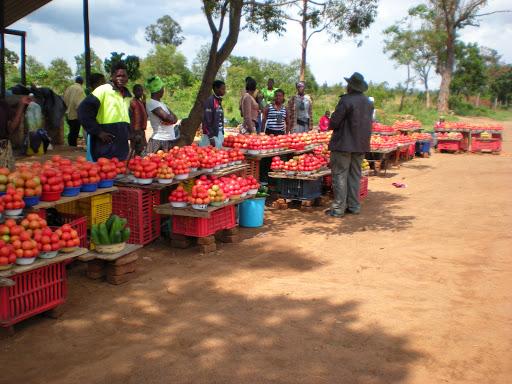 Vendors Association Appreciates the Re-Opening of Informal Sector Operation