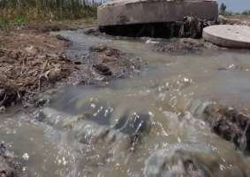 High Court Stops Chitungwiza Municipality from Releasing Affluent into Water Bodies